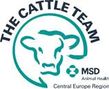 Cattle team